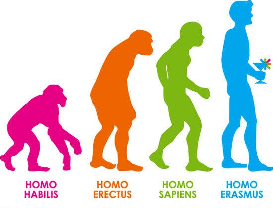 homo erasmus